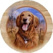 Thirstystone TSJK8 Natural Sandstone Coaster Set Killen & apos;s Golden Retriever