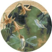 Thirstystone TSFK1 Natural Sandstone Coaster Set Ruby-Throated Hummingbirds