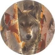 Thirstystone TSCB14 Natural Sandstone Coaster Set Birch Wolf