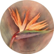 Thirstystone TSCH24 Natural Sandstone Coaster Set Bird of Paradise