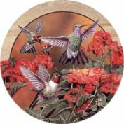 Thirstystone TSWV2 Natural Sandstone Coaster Set Hummingbirds and Flowers