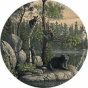 Thirstystone TSNK1 Natural Sandstone Coaster Set Bears