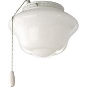 Progress Lighting AirPro Two Light Universal Schoolhouse Ceiling Fan Light Kit Finish
