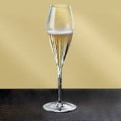 Riedel 0403/08 Vitis Champagne Glass, Set of 2