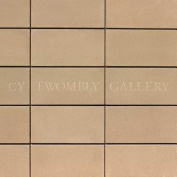 The Cy Twombly Gallery