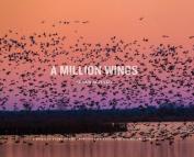 A Million Wings