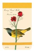 Audubon Warblers Mini Journal