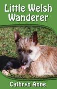 Little Welsh Wanderer