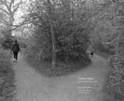 Walking Magpie
