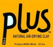 Activa 10kg Bulk White Plus Clay