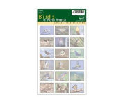 Impact Photographics IMP252SHS Sticker Sheet Birds North America