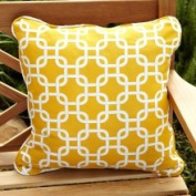 Mozaic Company Penelope Yellow 55.9cm Square Outdoor Pillow (Set of 2)