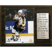 C & I Collectibles NHL Career Stat Plaque Team / Name