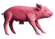 Areaware Pig Bank Pink