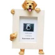 Golden Retriever 2.5 x 3.5 Picture Frame