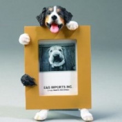 Bernese Mountain Dog-2.5x3.5 Picture Frame