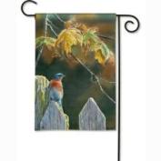 Magnet Works Garden Gate Bluebird Garden Flag - MAIL35947