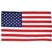 Valley Forge Flag Nylon Replacement Flag American USPN-1