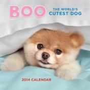 Boo the World's Cutest Dog 2014 Calendar