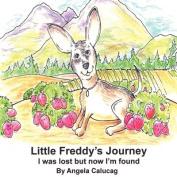 Little Freddy's Journey