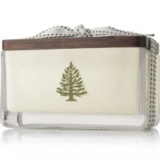Thymes Frasier Fir 2-Wick Seasonal Poured Candle