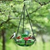 Parasol Bloompg Bloom Perch Hummingbird Feeder Green