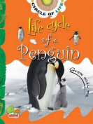 Life Cycle of a Penguin