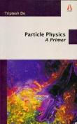 Particle Physics: A Primer