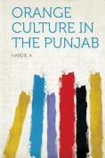 Orange Culture in the Punjab