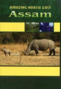 Amazing North East_ Assam