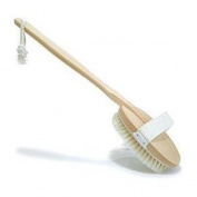 Bath and Body Brush Long Handle Natural Bristle