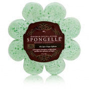 Spongelle Spongelle Hot Spice Ginger Infusion