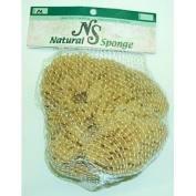 Large Natural Sea Sponge