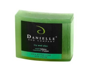 Danielle and Company Organic Bar Soap R01095 Ivy and Aloe