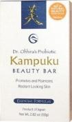 Dr. Ohhira's Probiotic Kampuku Soap - 1 - Bar