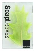 Design Ideas Soap Leaves, Pin Oak, Green