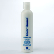 PPI Colour Guard Conditioner 240ml