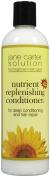 Jane Carter Nutrient Replenishing Conditioner, 350ml