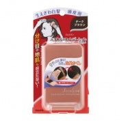 YANAGIYA Jocelyne Hair Cover Foundation Dark Brown 13g for Grey Hair