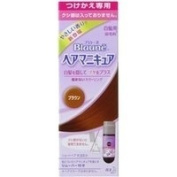 Kao Blaune | Hair Manicure | Brown Refill w/o Integrated Comb for Grey Hair