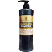 Lorenzo Regenerating Shampoo Ginseng Exract Plus Vitamin E for Hair Growth 980ml