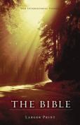 NIV Larger-Print Bible