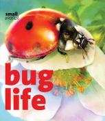 Bug Life (Small World)