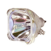 Replacement flashbulb for the Avance IPL450 Intense Pulsed Light Machines