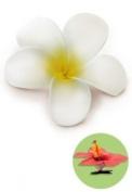 Hawaiian Hair Clip Foam Flower Plumeria White & Yellow