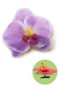 Hawaiian Hair Clip Silk Flower Orchid Purple