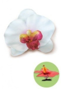 Hawaiian Hair Clip Silk Flower Orchid White
