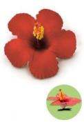 Hawaiian Hair Clip Foam Flower Hibiscus Red