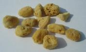 Natural Sea Silk Sponges - Pack of 12