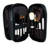 Brush Set - 10 Pieces + Case